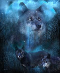 Story Art - Legend Of The Blue Wolf